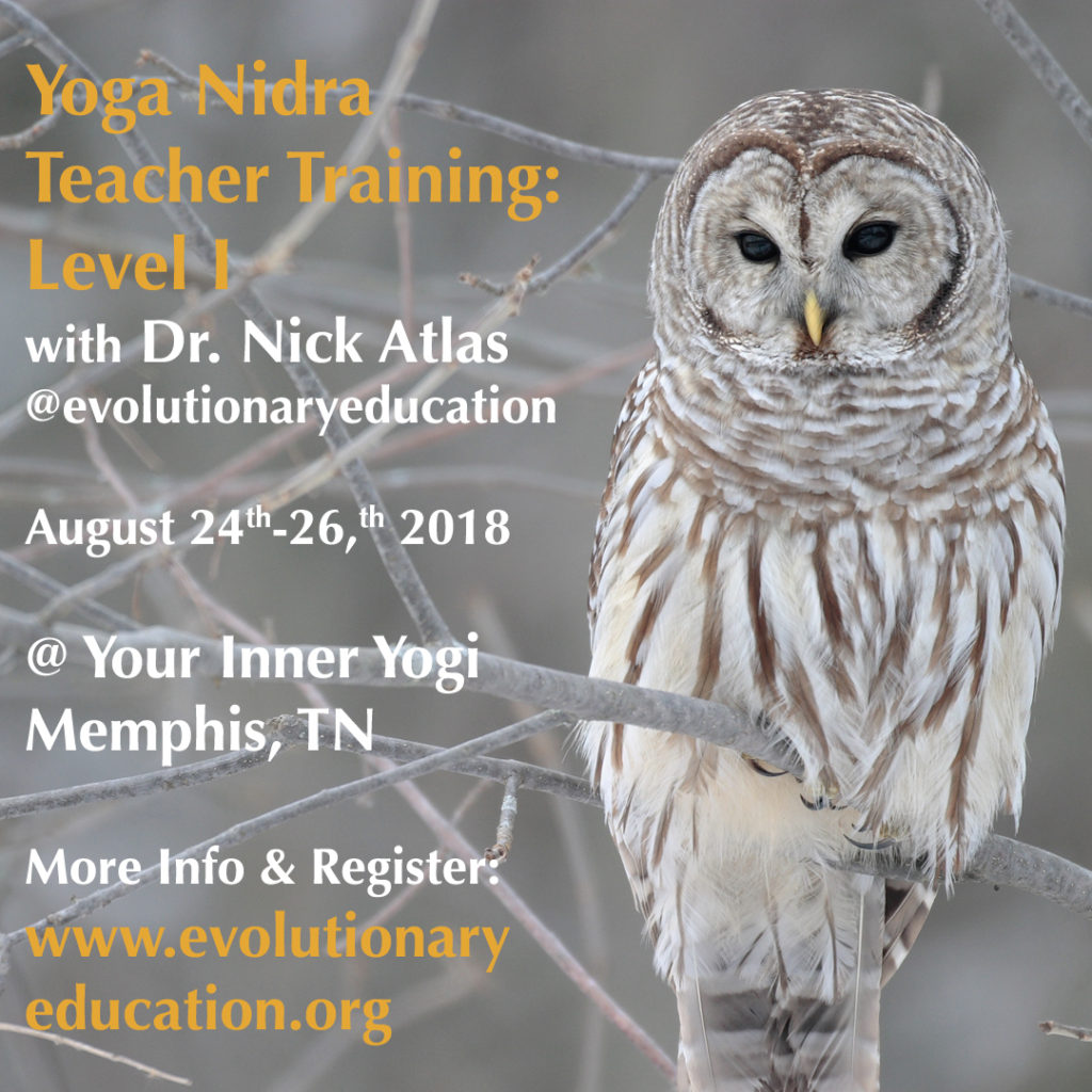 Yoga Nidra Teacher Training Level 1 w/ Dr. Nick Atlas